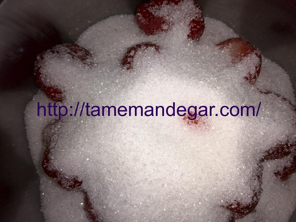 imageedit_5_5038749862