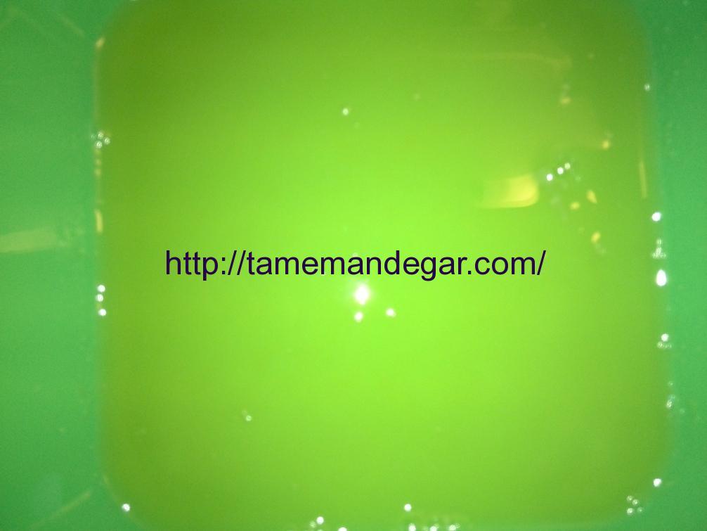 imageedit_12_9627131097
